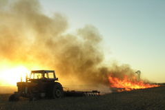 Burning de chaume Photos libres de droits