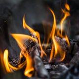 Burning de madeira Imagens de Stock