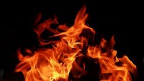 Burning de papel - llama brillante metrajes