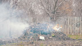 Burning debris, leaves, small trees and weeds in the garden on own plot. slow motion stock video