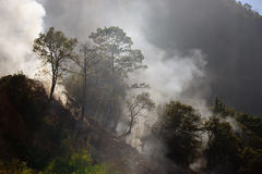 Burning debris on the slopes of the mountains in the jungles of Stock Photos
