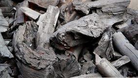 Burning del carbón de leña almacen de metraje de vídeo