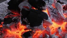 Burning del fuego del carbón de leña almacen de video