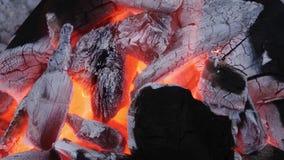 Burning del fuego del carbón de leña almacen de metraje de vídeo