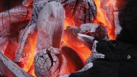 Burning del fuego del carbón de leña metrajes