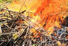 Burning di legno Fotografia Stock