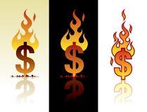 burning dollar Royaltyfri Bild