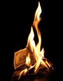 burning dollar royaltyfria bilder