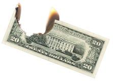 burning dollar arkivbild