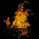 Burning Dollar Royalty Free Stock Photos