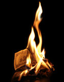 Burning dollars Royalty Free Stock Images