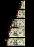 Burning dollars Stock Photo