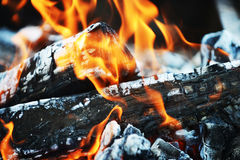 Burning down fire Stock Image