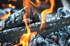 Burning down fire Stock Images