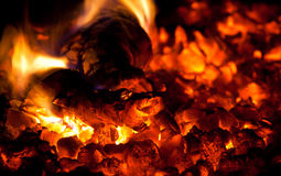 Burning down fire wood Royalty Free Stock Image