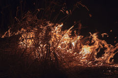 Burning dry grass at night. Fire on location with dry grass at night Stock Image