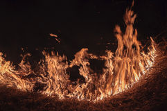Burning dry grass at night. Fire on location with dry grass at night Royalty Free Stock Images