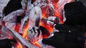 Burning du feu de charbon de bois clips vidéos