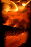 Burning embers Stock Photography