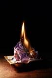Burning Euro Banknote Royalty Free Stock Image
