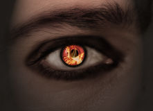 Burning eye royalty free stock images