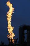 burning fackla Royaltyfria Foton