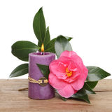 Candle and camellia flower Royalty Free Stock Photography
