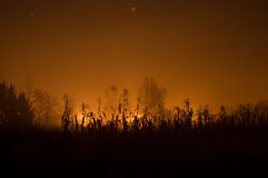 Burning Fields. Night time sky over the Croatian country side Royalty Free Stock Images