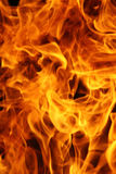 Burning fire. Can be used as  background Royalty Free Stock Images