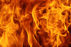 Burning fire. Can be used as background Royalty Free Stock Image