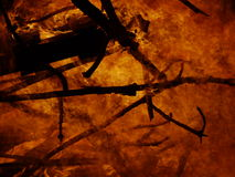 Burning fire background Royalty Free Stock Images