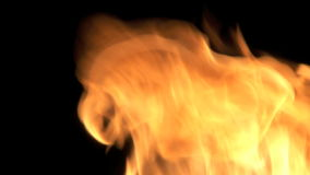 Burning Fire. With black background stock video
