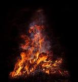 Burning fire. On black background royalty free stock image