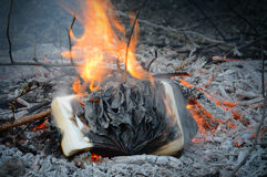 Burning in the fire book. Incinerate shiny blazing aged dirty open antique book on smoldering pyre of brushwood in depth blue night. Close-up macro view with Stock Photos