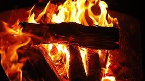 Campfire flames closeup stock video footage