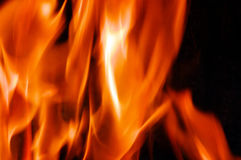 Burning fire close-up Stock Images