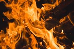 Burning fire close up on black background Stock Image