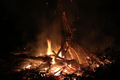 Burning fire. In the dark Royalty Free Stock Image