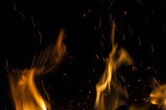 Burning fire with fiery orange flames, sparks and embers explodi Stock Images