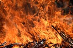 Burning Fire Firefighting Danger Nature Wood Background Stock Photo. Burning Fire Firefighting Danger Nature Wood Abstract Background Insurance Stock Photo royalty free stock photos