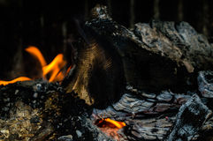 Burning fire. In a fireplace Royalty Free Stock Photos