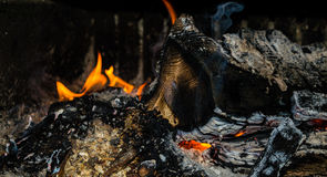 Burning fire. In a fireplace Royalty Free Stock Images