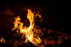 Burning fire. In a fireplace Royalty Free Stock Photo