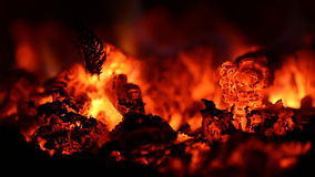 Burning fire in the fireplace stock video footage