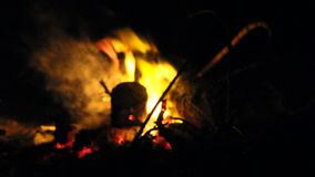 Burning fire with firewood. At night stock footage
