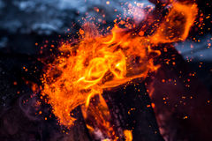 Burning fire flame Royalty Free Stock Photography