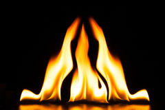 Burning fire flame on black background Royalty Free Stock Photography