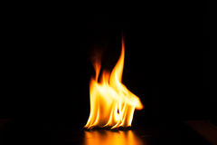 Burning fire flame on black background.  Royalty Free Stock Image