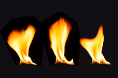 Burning fire flame on black background.  Stock Images