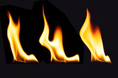 Burning fire flame on black background.  Royalty Free Stock Photo
